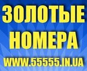 Красивые Золотые номера МТС 050,  066,  095,  099 Украина