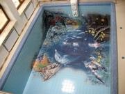 Художественная роспись дна бассейнов