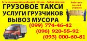 Грузоперевозки животных Севастополь. Перевозка животные в клетках
