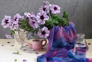 Петуния ампельная,  кустовая,  махровая. Цветы