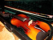 Скрипка,  целая
