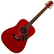 Акустическая гитара Hohner HW 220-TWR