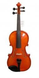 Скрипки,  учебные и профессиональные