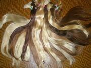 Предлагаю купить волосы от 45 см дорого